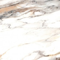 Плитка Cerrad Calacatta gold poler 59,7x59,7 (5903313316828)